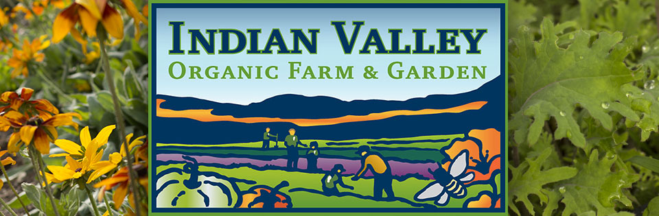 Taking the IVC Organic Farm and Garden to New Heights